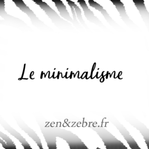 Article-minimalisme-Zen-Zebre-Audrey-Janvier-Image-Title
