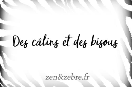 Article-calins-bisous-Zen-Zebre-Audrey-Janvier-Image-Title