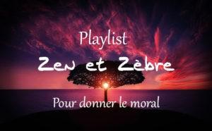 Vignette Youtube de la Playlist pour donner le moral