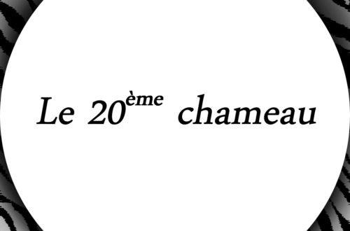 L'histoire du 20e chameau- issue du livre Ho'oponopono- Image d'inspiration Zen & Zèbre (réalisée par Audrey Janvier)