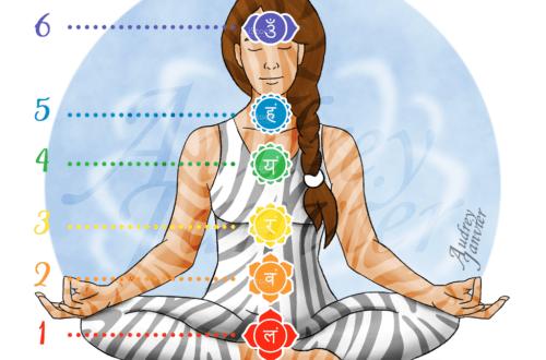 Image des chakras sur l'avatar et logo Zen et Zèbre - racine, sacré, solaire, coeur, gorge, 3eme oeil et couronne