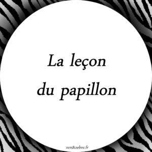 Conte La lecon du papillon - Zen et Zèbre