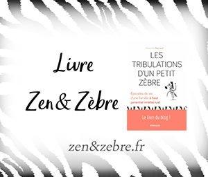Chronique du livre les tribulations d'un petit zèbre de Alexandra Reynaud - livre pratique de développement personnel par Zen et Zèbre