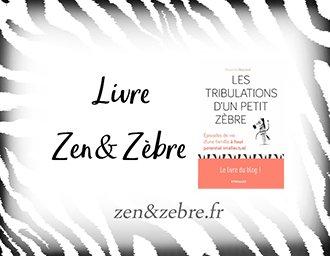 Chronique du livre les tribulations d'un petit zèbre de Alexandra Reynaud  – livre pratique de développement personnel par Zen et Zèbre
